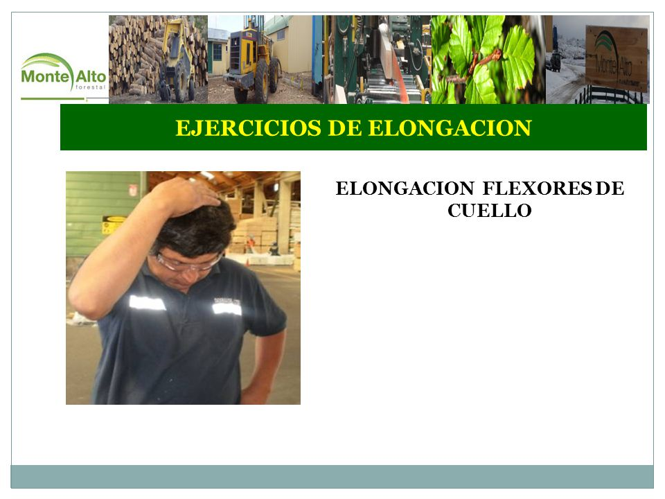 EJERCICIOS DE ELONGACION ELONGACION FLEXORES DE CUELLO