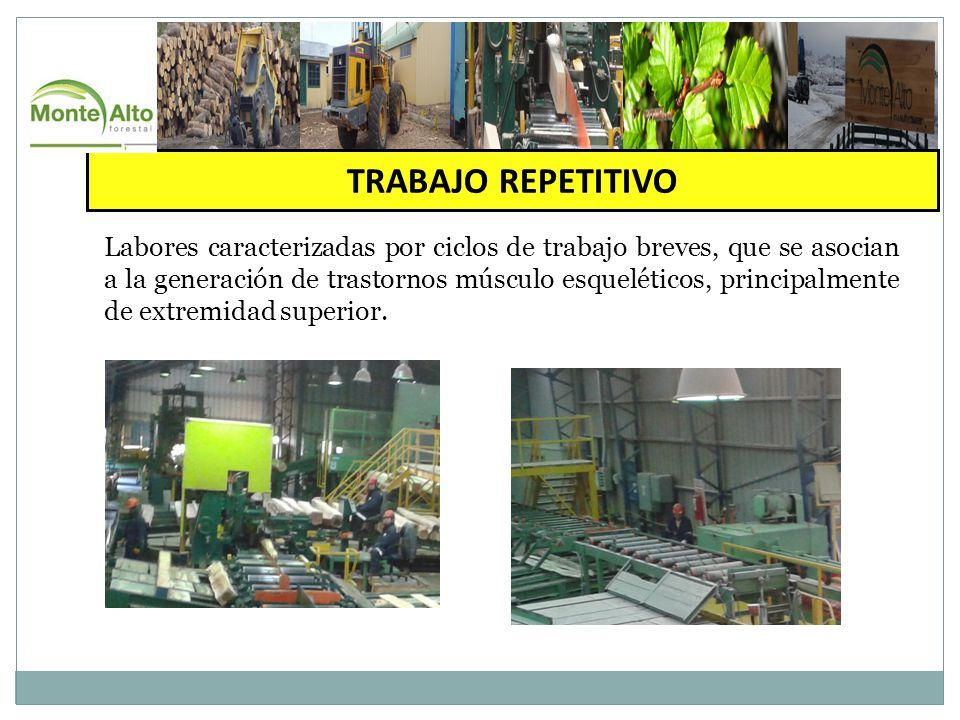 TRABAJO REPETITIVO