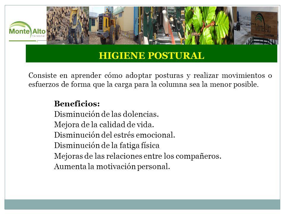 HIGIENE POSTURAL Beneficios: Disminución de las dolencias.