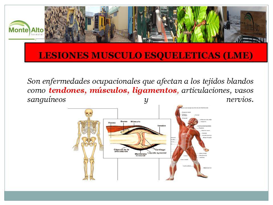 LESIONES MUSCULO ESQUELETICAS (LME)