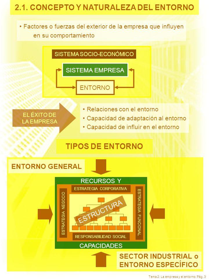 2.1. CONCEPTO Y NATURALEZA DEL ENTORNO