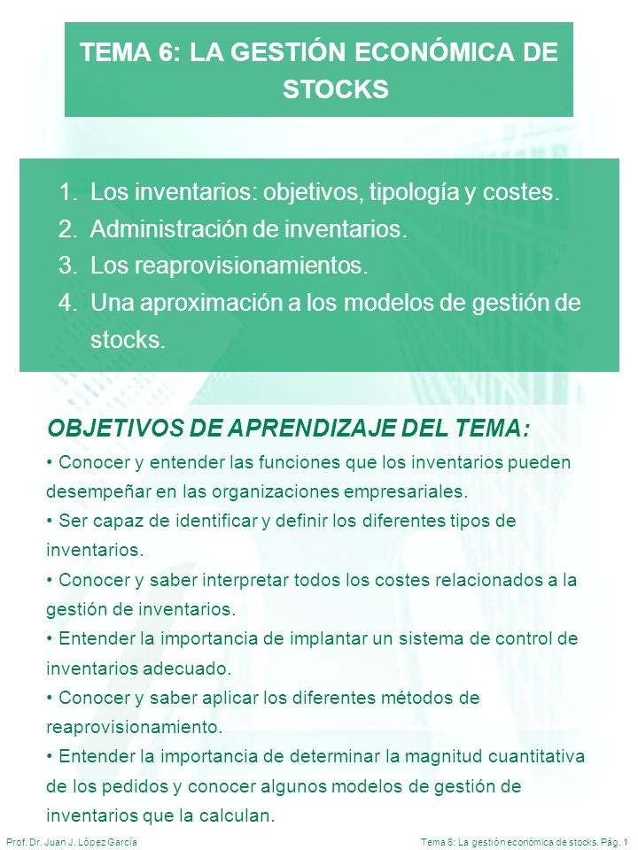 TEMA 6: LA GESTIÓN ECONÓMICA DE STOCKS