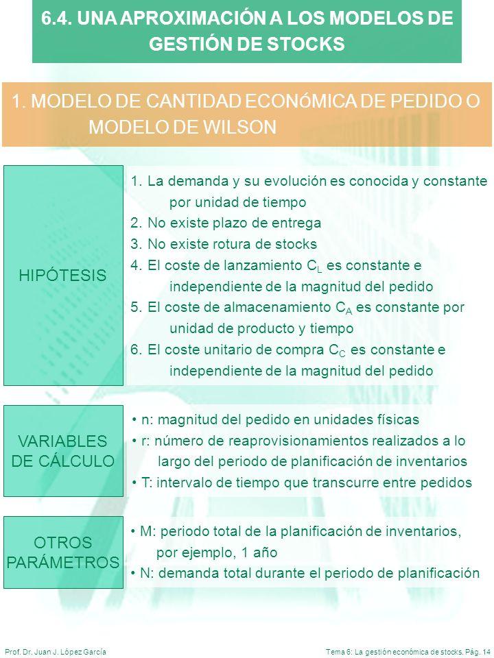 6.4. UNA APROXIMACIÓN A LOS MODELOS DE