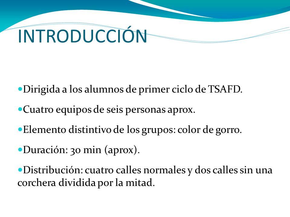 INTRODUCCIÓN Dirigida a los alumnos de primer ciclo de TSAFD.