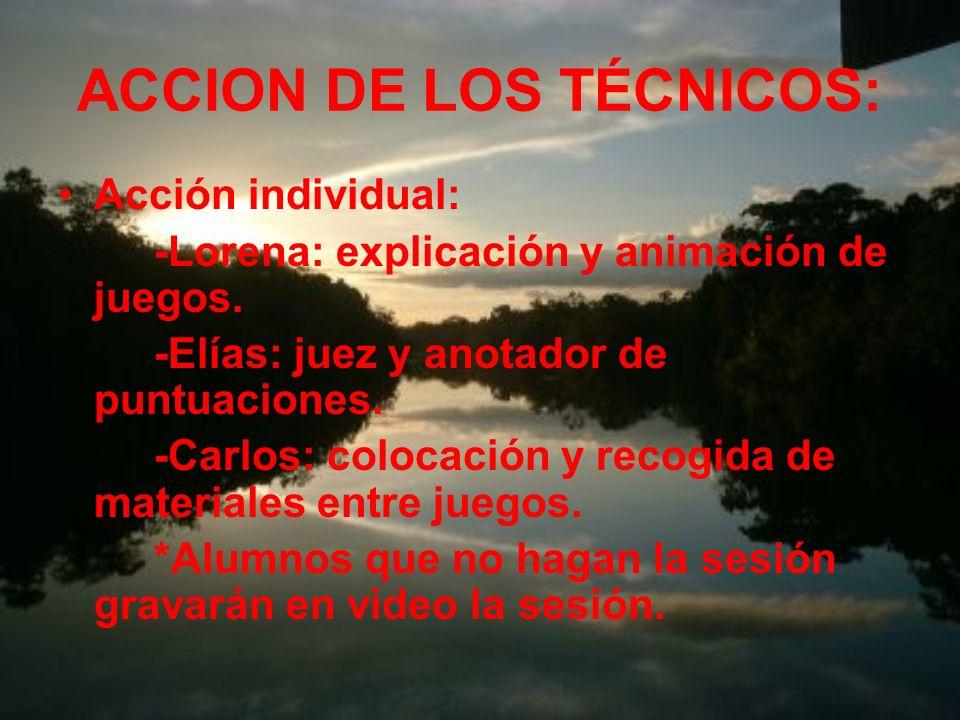 ACCION DE LOS TÉCNICOS: