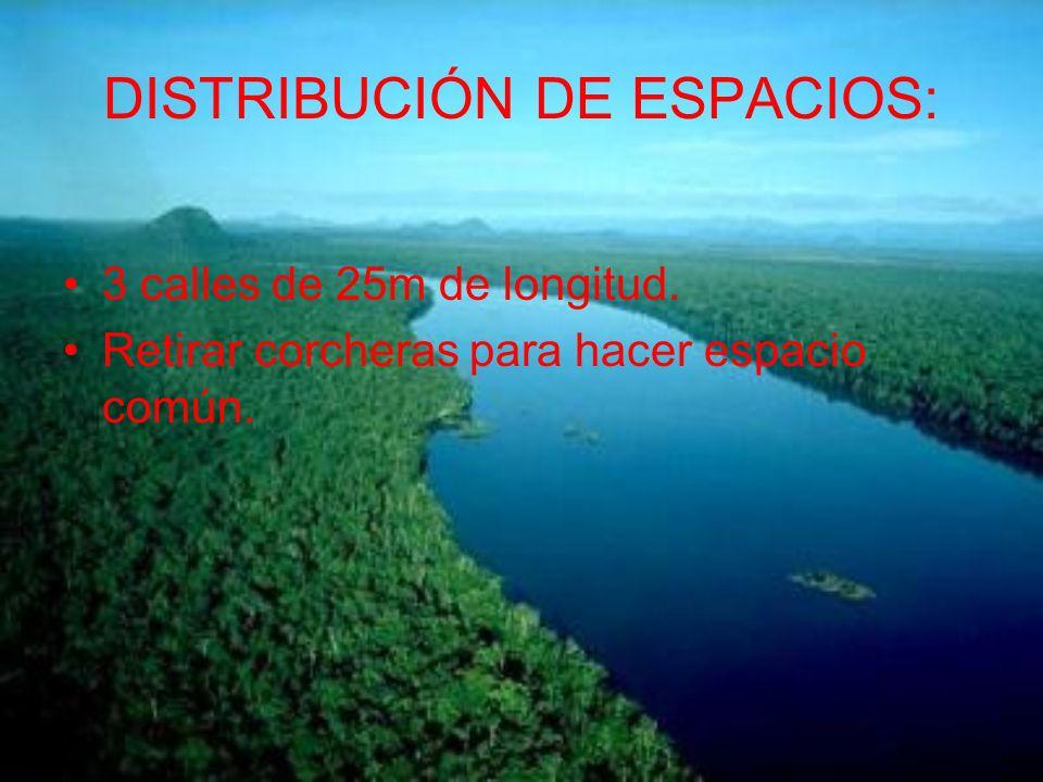 DISTRIBUCIÓN DE ESPACIOS: