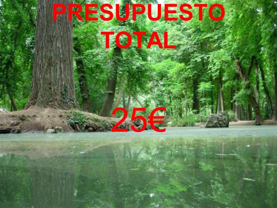 PRESUPUESTO TOTAL 25€