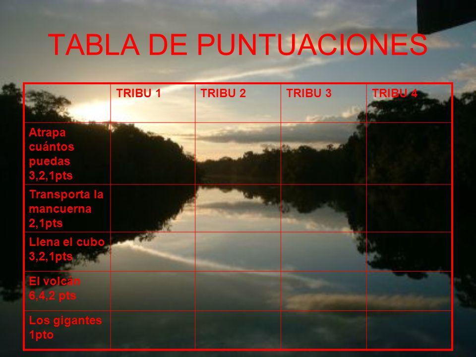 TABLA DE PUNTUACIONES TRIBU 1 TRIBU 2 TRIBU 3 TRIBU 4