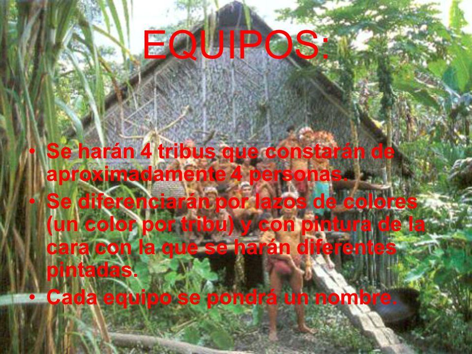 EQUIPOS: Se harán 4 tribus que constarán de aproximadamente 4 personas.