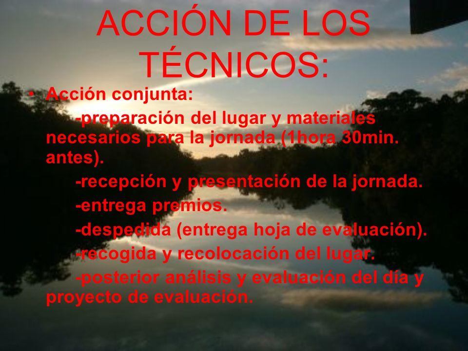 ACCIÓN DE LOS TÉCNICOS:
