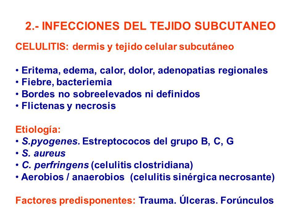 2.- INFECCIONES DEL TEJIDO SUBCUTANEO