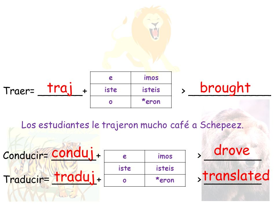 traj brought drove conduj traduj translated
