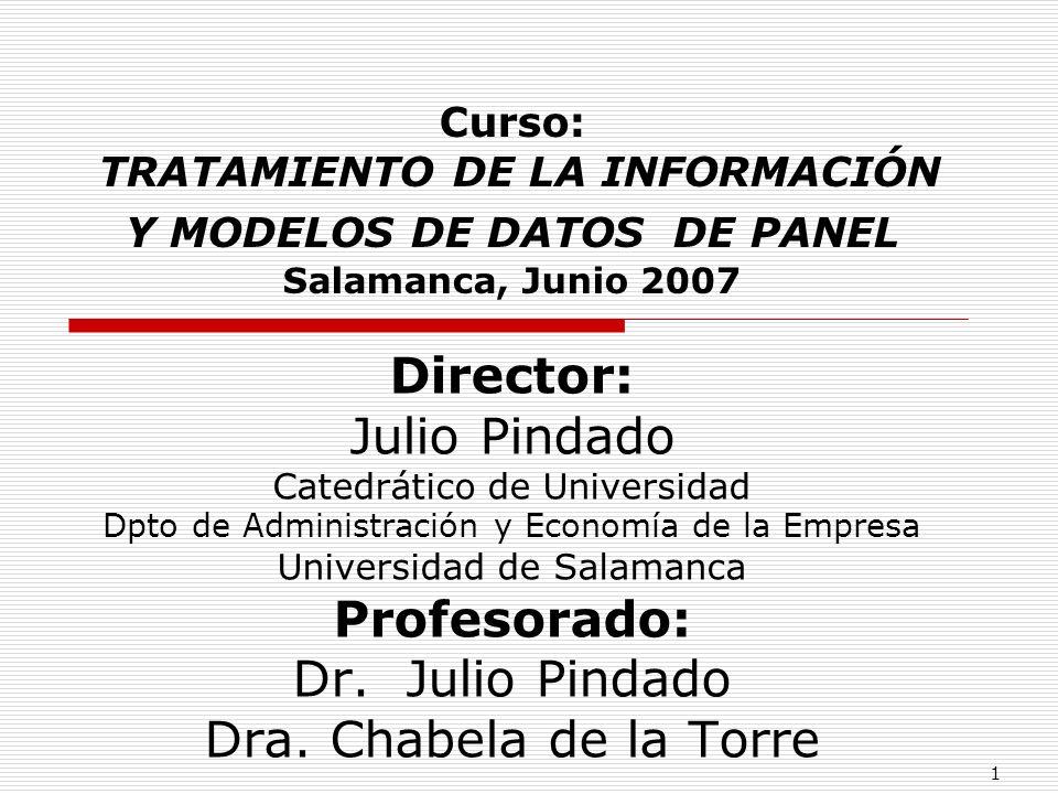 Director: Julio Pindado Profesorado: Dr. Julio Pindado
