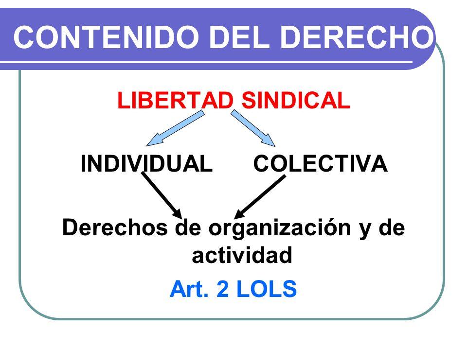 Derechos de organización y de actividad