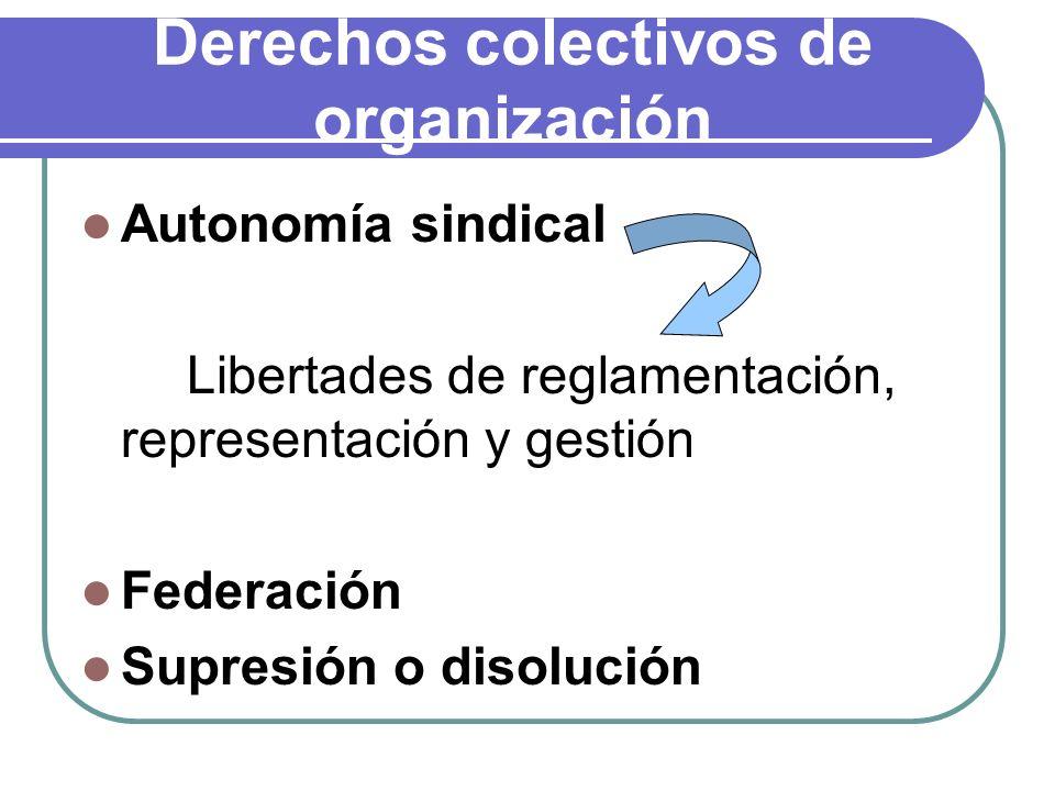 Derechos colectivos de organización