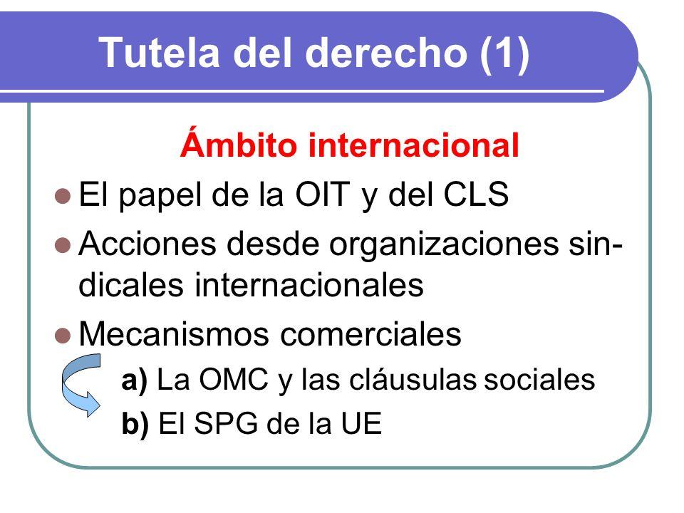 Tutela del derecho (1) Ámbito internacional