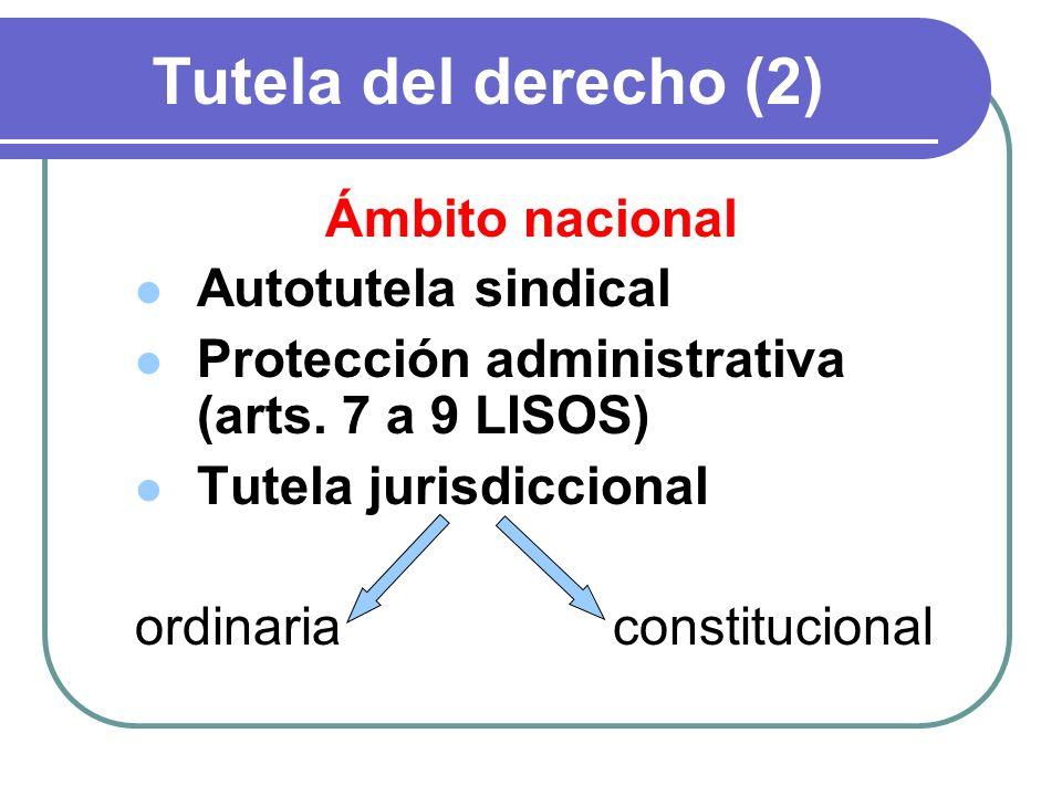 Tutela del derecho (2) Ámbito nacional Autotutela sindical