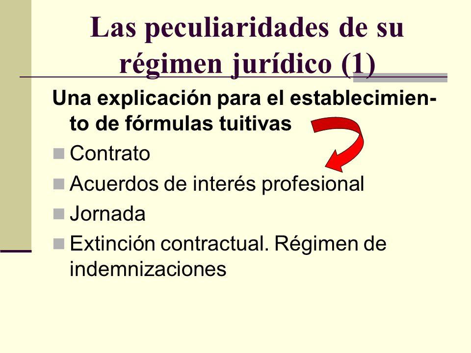 Las peculiaridades de su régimen jurídico (1)