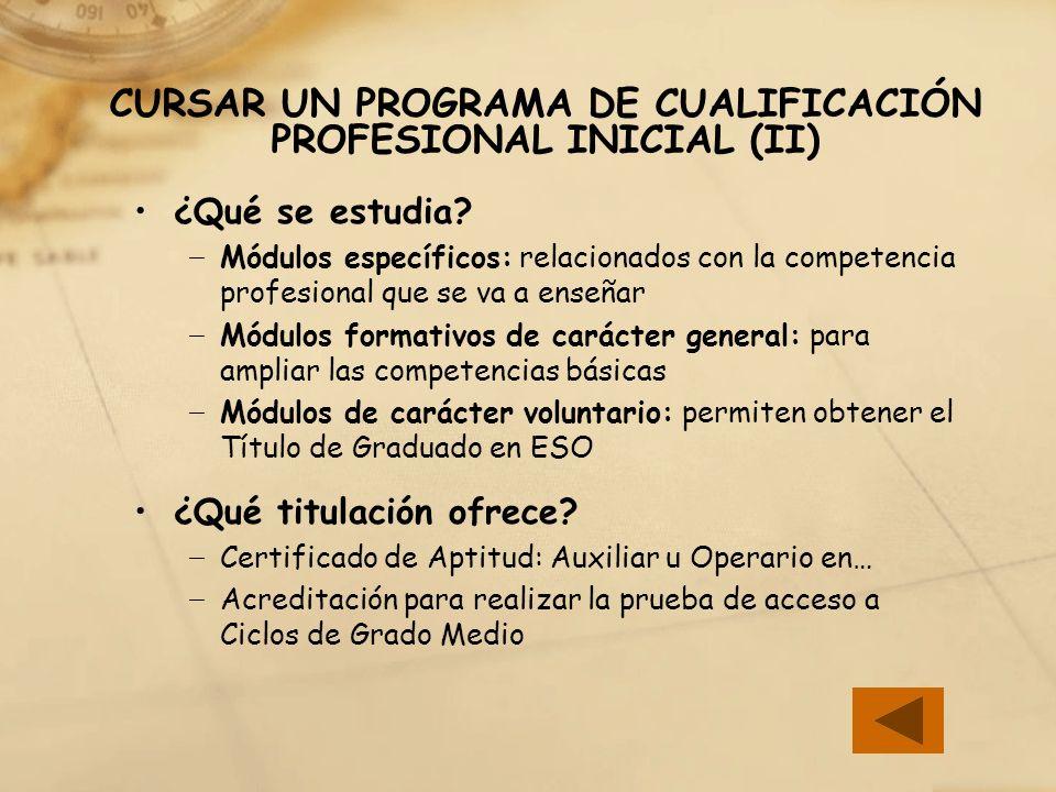 CURSAR UN PROGRAMA DE CUALIFICACIÓN PROFESIONAL INICIAL (II)