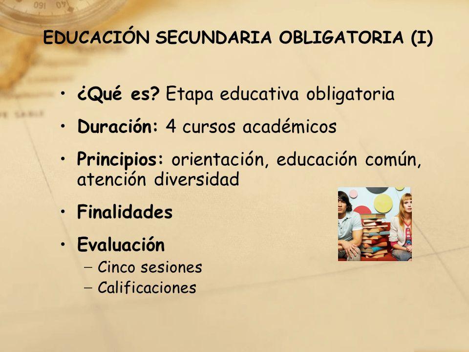EDUCACIÓN SECUNDARIA OBLIGATORIA (I)