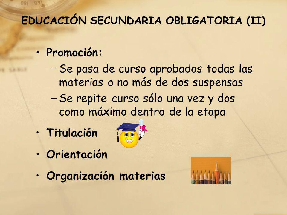EDUCACIÓN SECUNDARIA OBLIGATORIA (II)