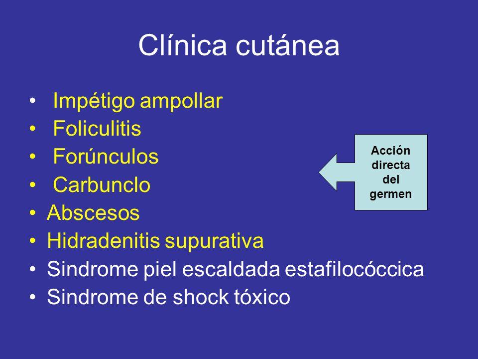 Clínica cutánea Impétigo ampollar Foliculitis Forúnculos Carbunclo