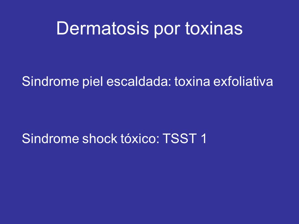 Dermatosis por toxinas