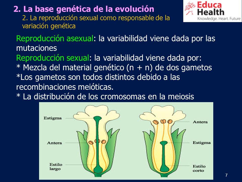 2. La base genética de la evolución