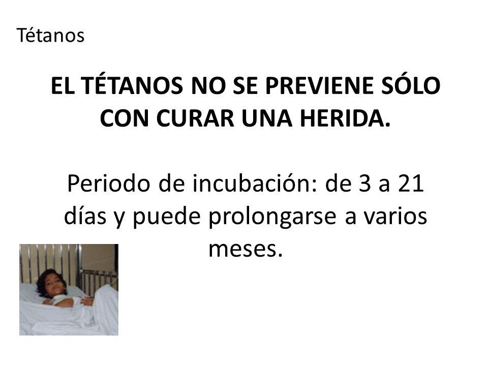 Tétanos EL TÉTANOS NO SE PREVIENE SÓLO CON CURAR UNA HERIDA.