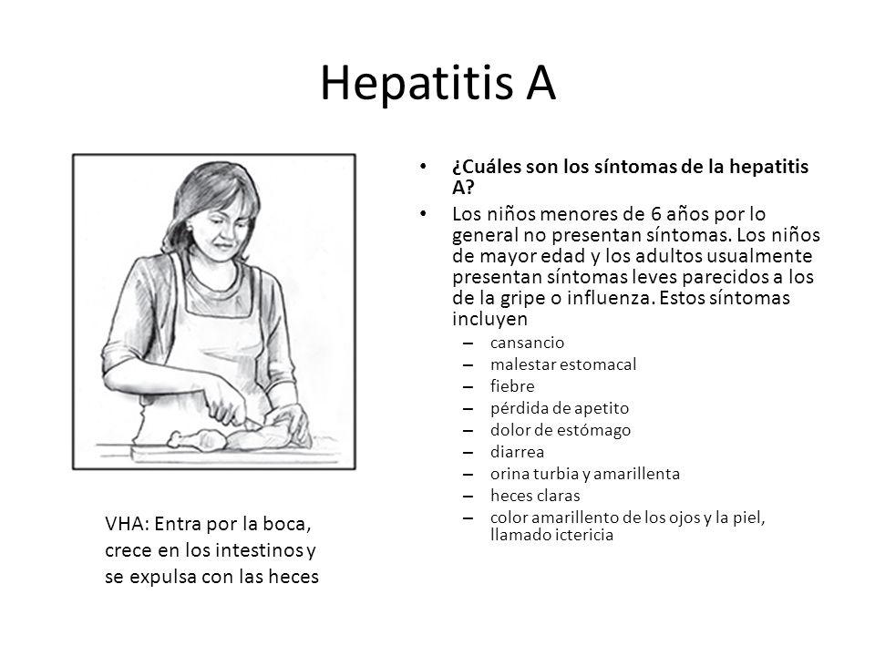 Hepatitis A ¿Cuáles son los síntomas de la hepatitis A