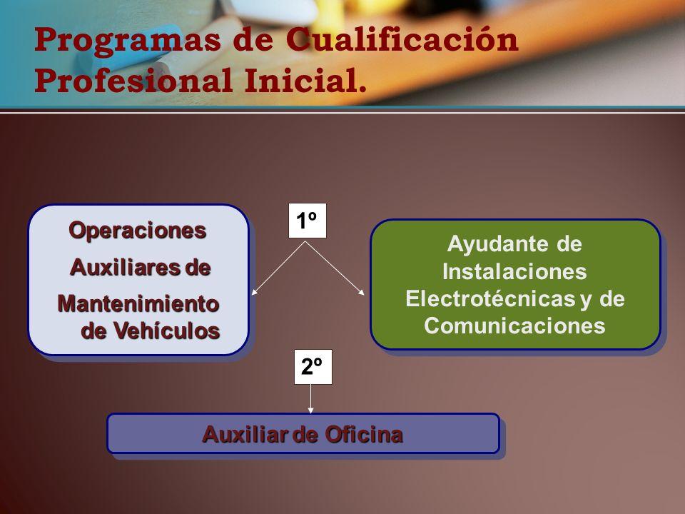 Programas de Cualificación Profesional Inicial.