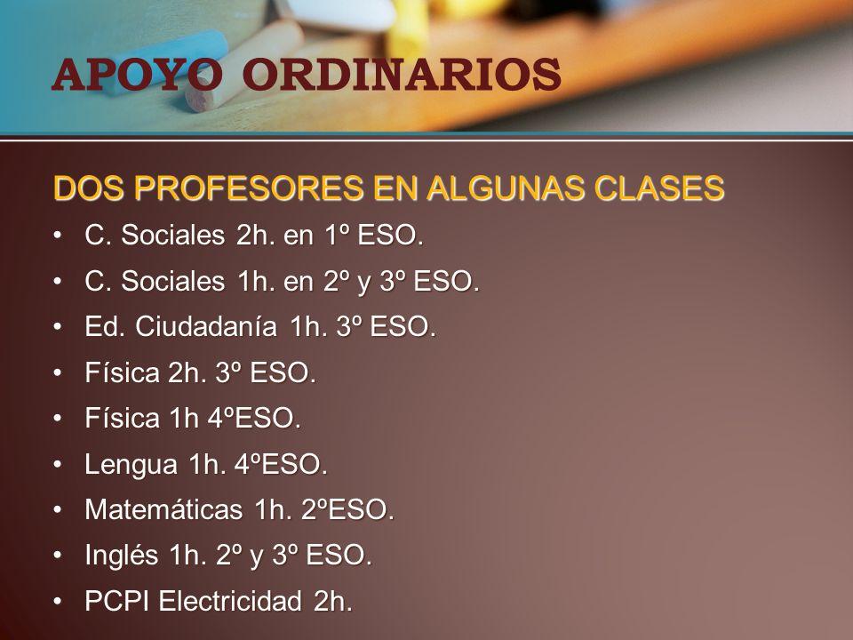 APOYO ORDINARIOS DOS PROFESORES EN ALGUNAS CLASES