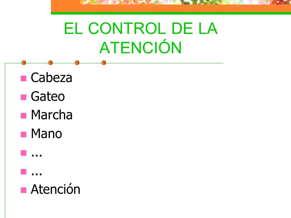 EL CONTROL DE LA ATENCIÓN