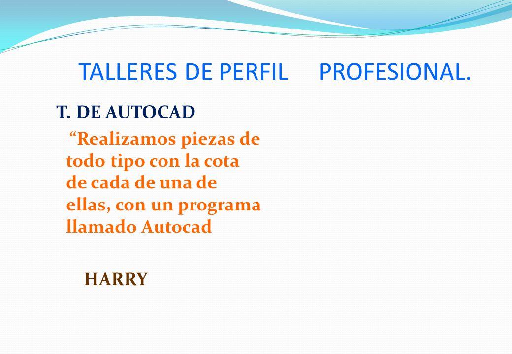 TALLERES DE PERFIL PROFESIONAL.