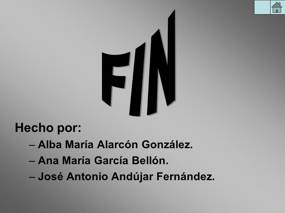 FIN Hecho por: Alba María Alarcón González. Ana María García Bellón.