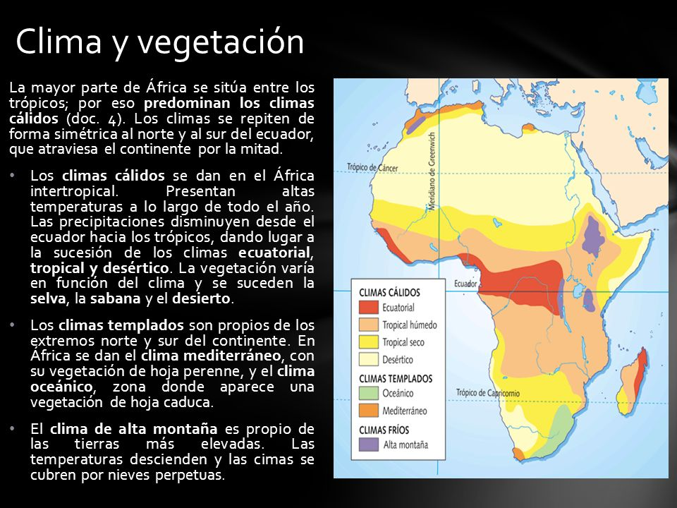 Clima y vegetación
