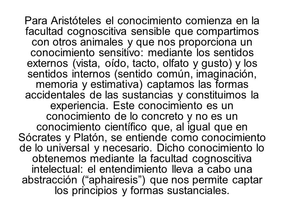 Para Aristóteles el conocimiento comienza en la facultad cognoscitiva sensible que compartimos con otros animales y que nos proporciona un conocimiento sensitivo: mediante los sentidos externos (vista, oído, tacto, olfato y gusto) y los sentidos internos (sentido común, imaginación, memoria y estimativa) captamos las formas accidentales de las sustancias y constituimos la experiencia.