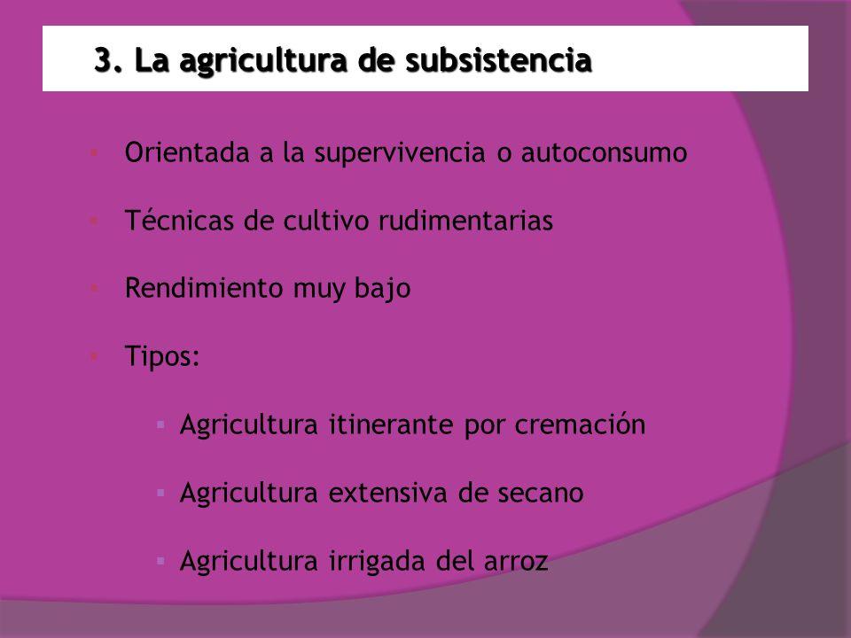 3. La agricultura de subsistencia