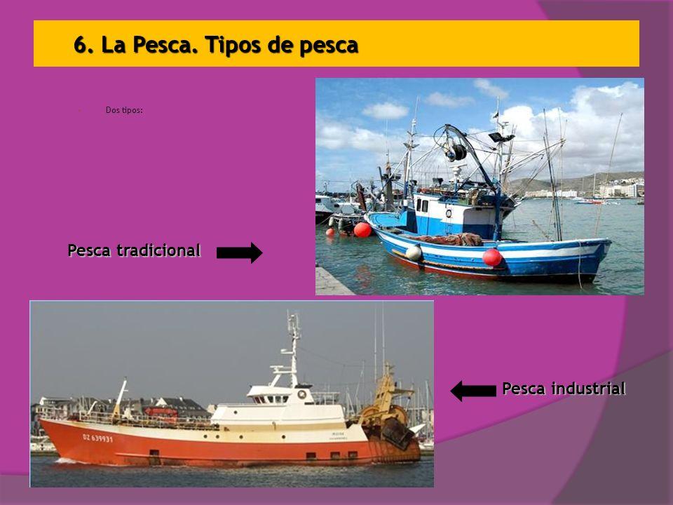 6. La Pesca. Tipos de pesca Pesca tradicional Pesca industrial