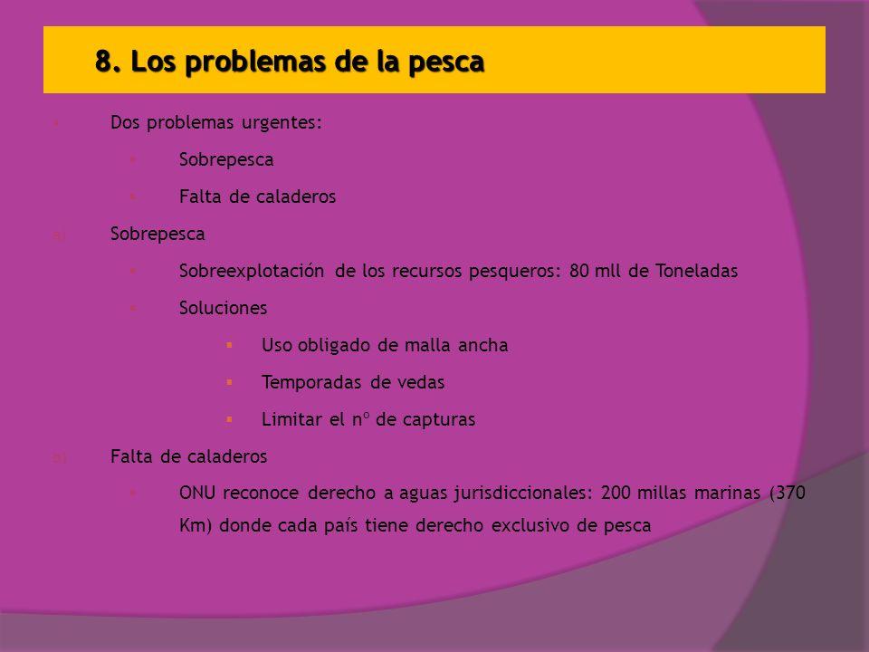 8. Los problemas de la pesca