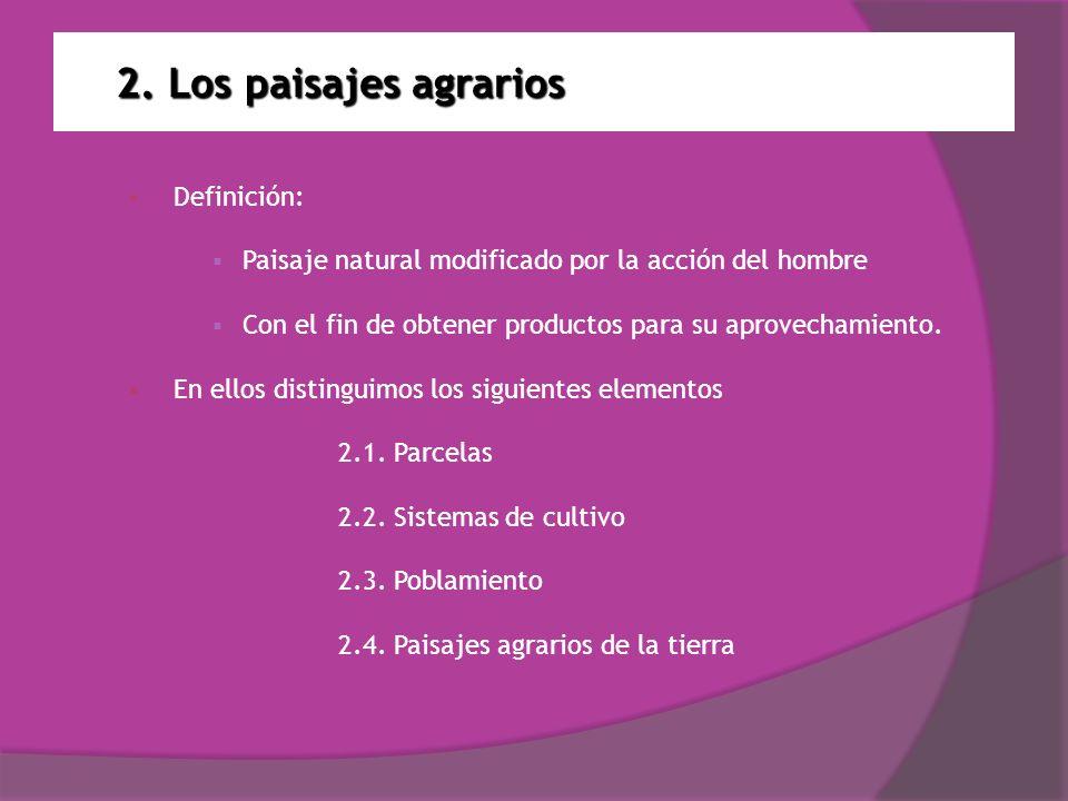 2. Los paisajes agrarios Definición: