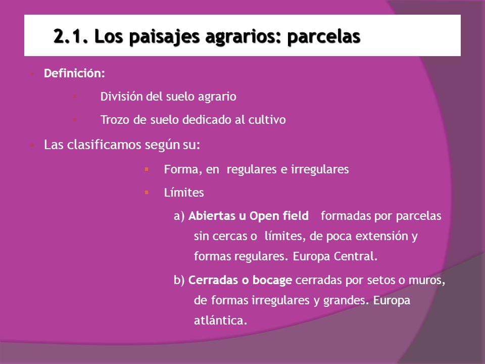 2.1. Los paisajes agrarios: parcelas