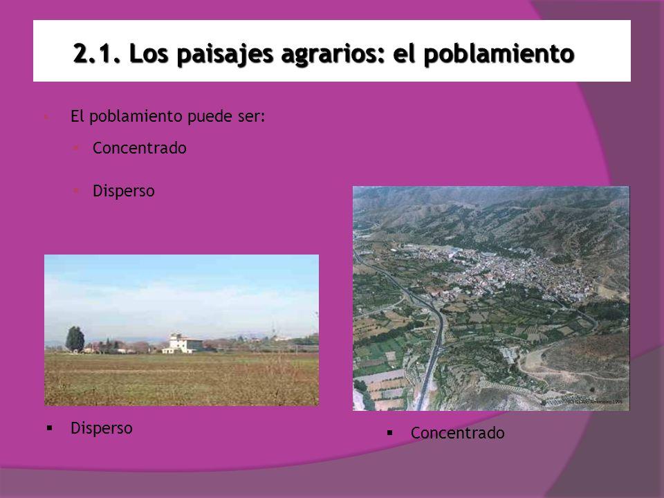 2.1. Los paisajes agrarios: el poblamiento