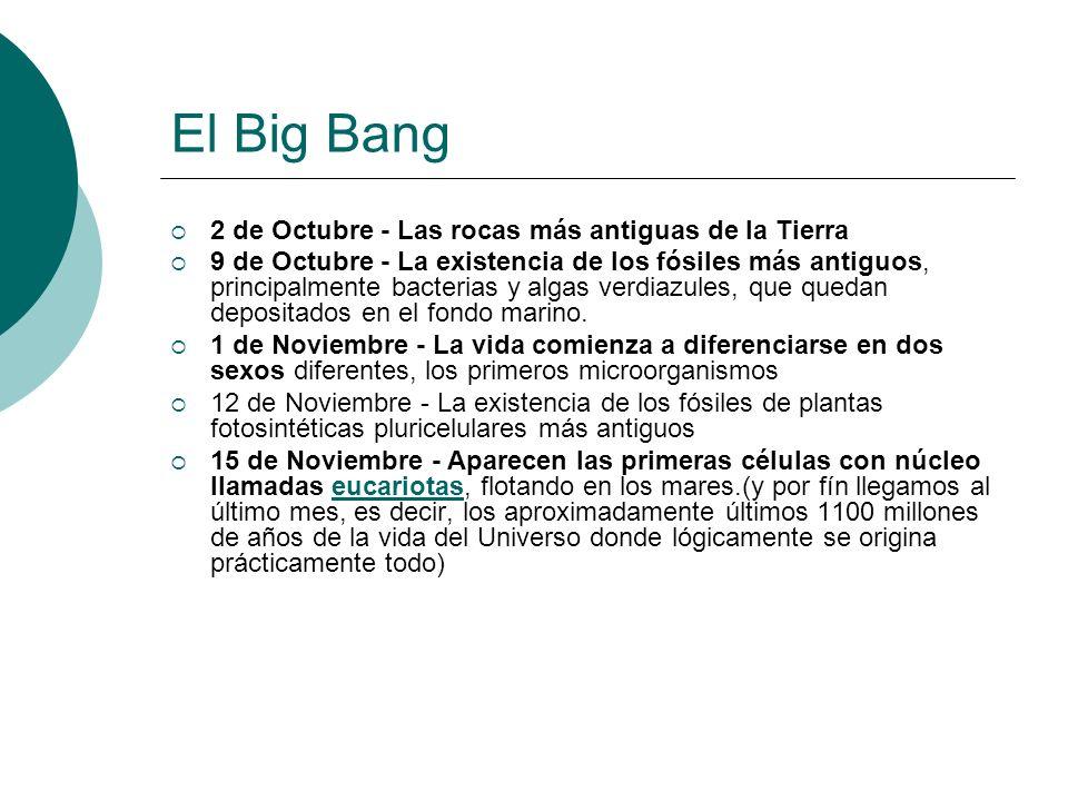 El Big Bang 2 de Octubre - Las rocas más antiguas de la Tierra