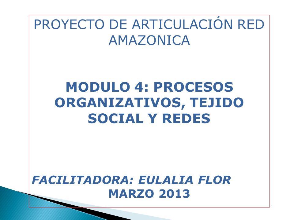 MODULO 4: PROCESOS ORGANIZATIVOS, TEJIDO SOCIAL Y REDES