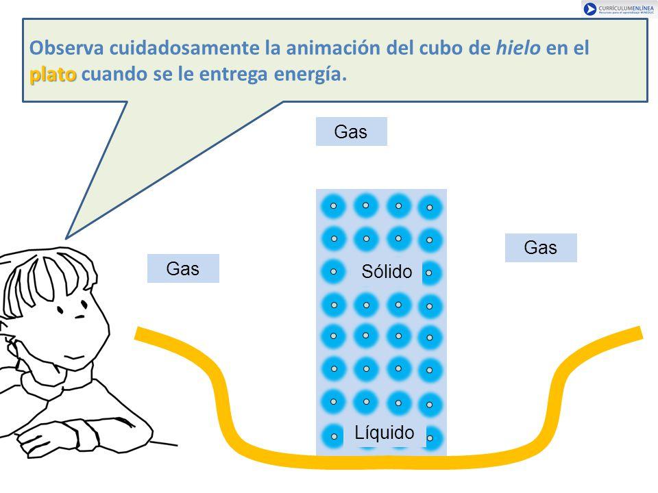 Observa cuidadosamente la animación del cubo de hielo en el plato cuando se le entrega energía.