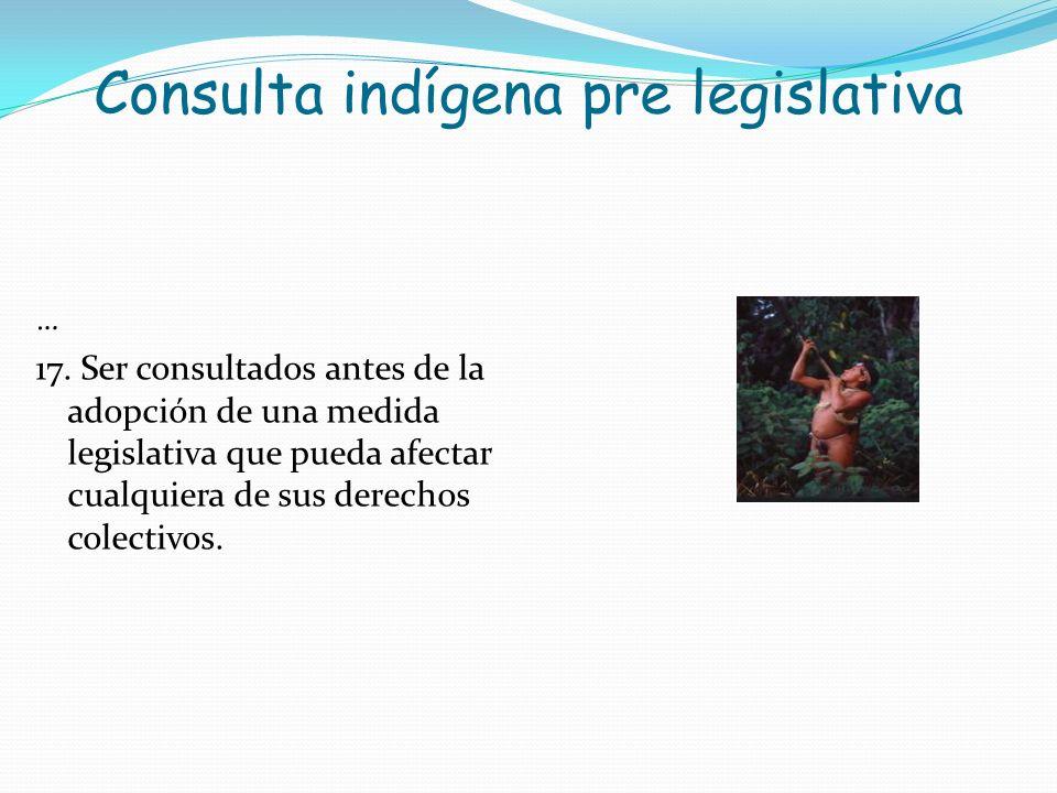 Consulta indígena pre legislativa