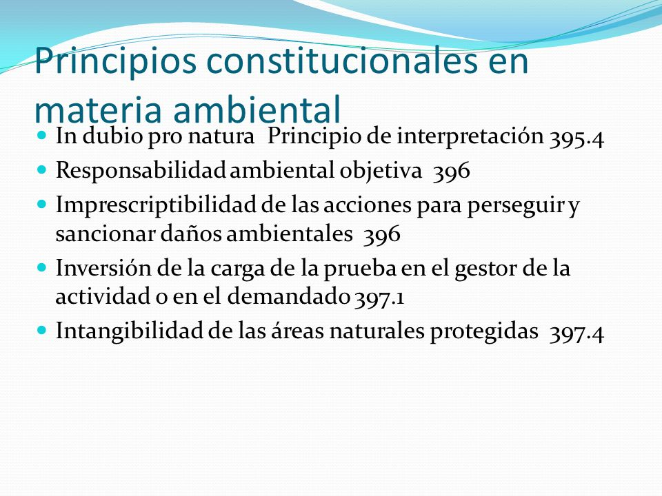 Principios constitucionales en materia ambiental