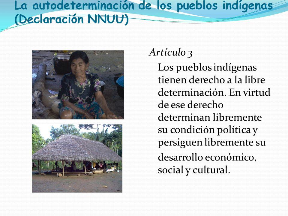 La autodeterminación de los pueblos indígenas (Declaración NNUU)