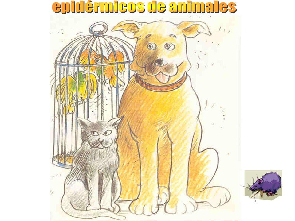 epidérmicos de animales